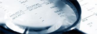 Revisora-Fiscal-asd